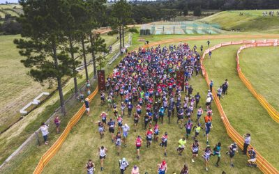 25th BUCO Tomato Trot & Cycle Press Release